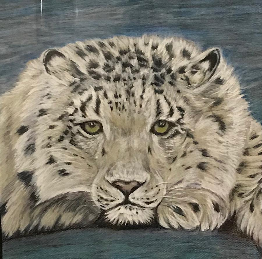 Snow Leopard Photograph - Wondering by Diane Sleger