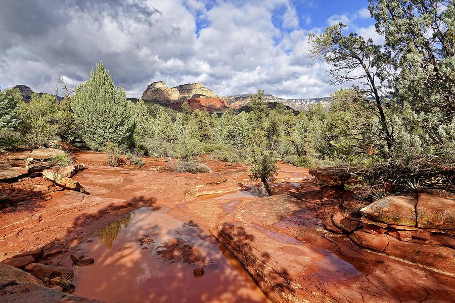 Wonders on Mescal Trail by Leda Robertson
