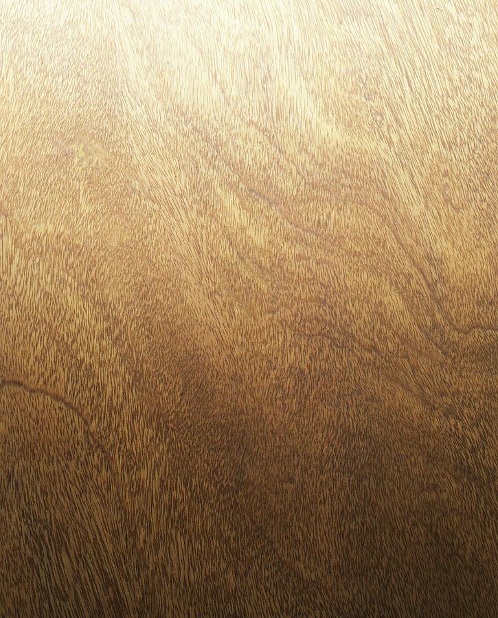 Wood Backdrop Photograph by Lumina Imaging