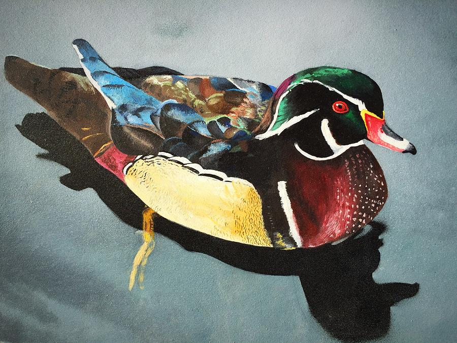 Wood Duck No. 1 by Danielle Rosaria