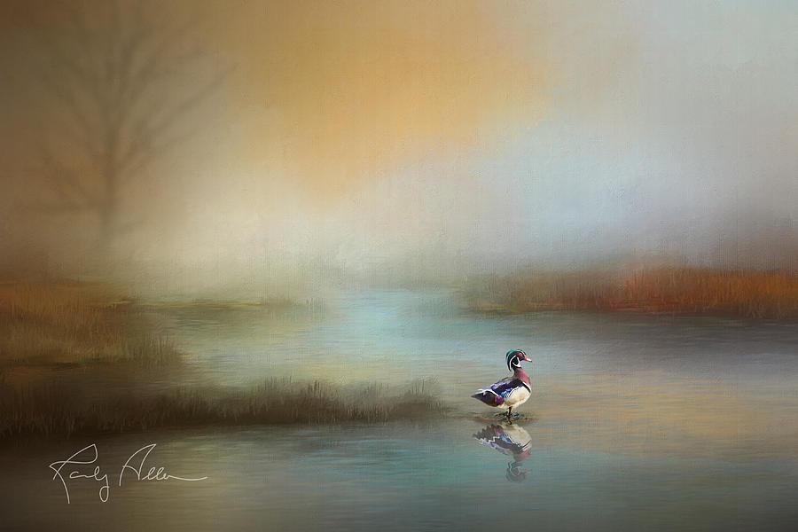 Wood Duck by Randall Allen