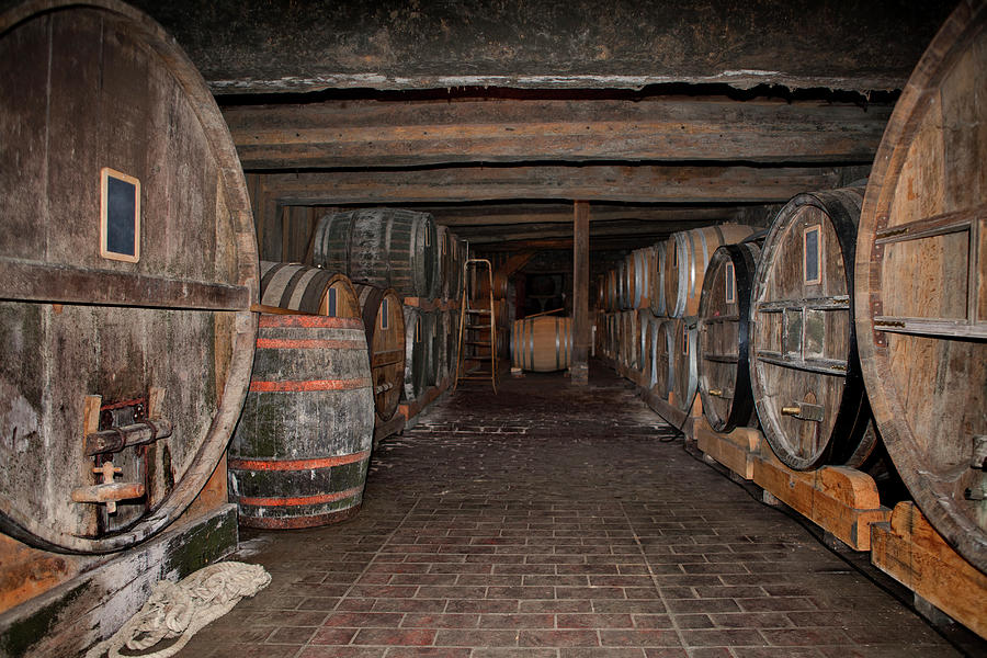 Wooden Barrels In A Cider Winery Photograph by Studio Box