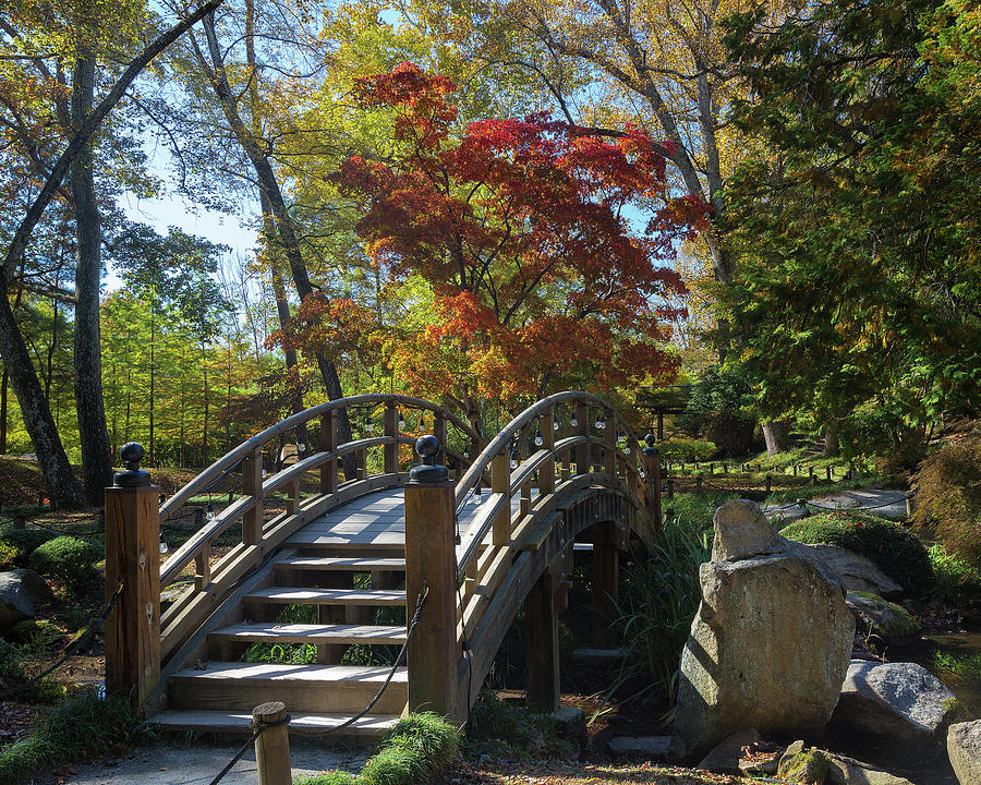 Wooden Bridge in Japanese Garden by Jemmy Archer