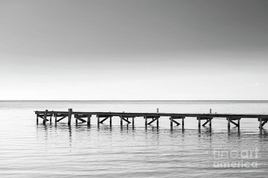 Wooden Dock As Minimalism Background Black and White by Tim Hester