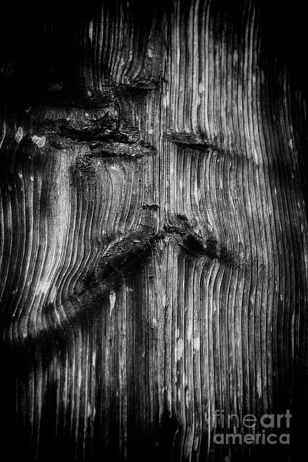 wooden face by Fabian Roessler