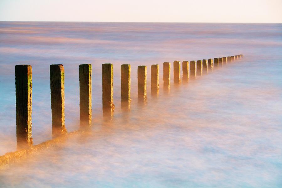 Wooden Groynes, Leysdown, Isle Of Photograph by John Miller Photographer