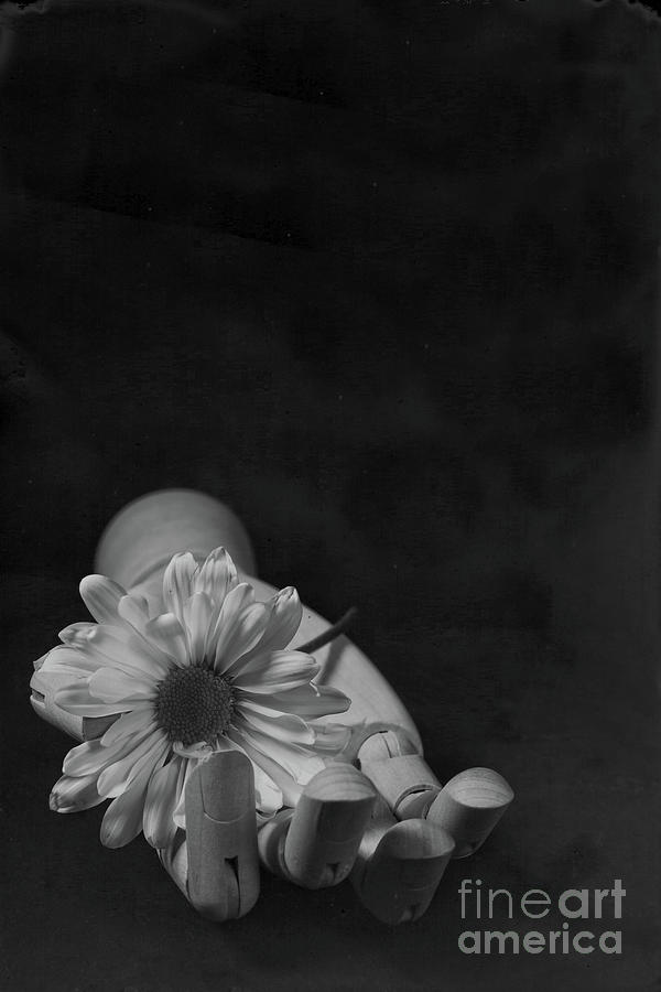 Wooden Hand Flower Tin Type by Edward Fielding