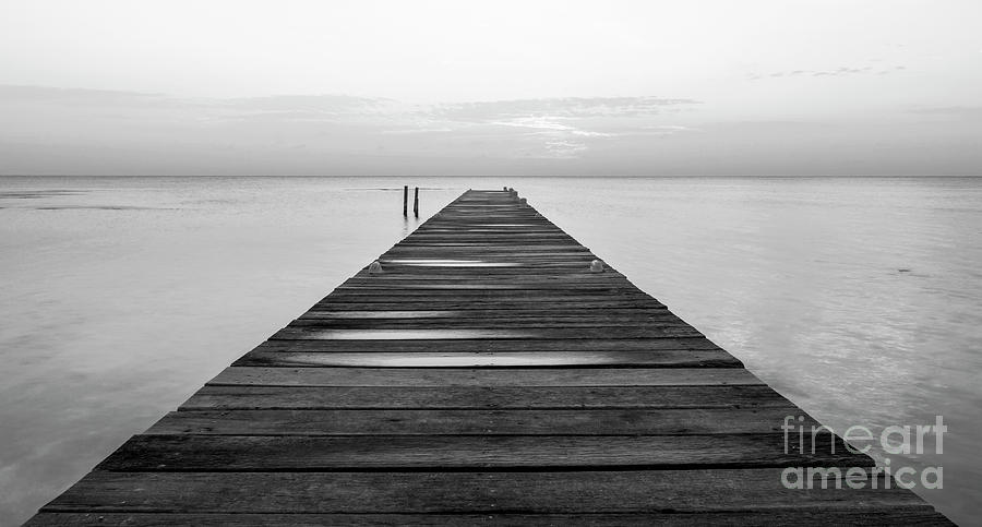 Wooden Jetty At Dawn Black and White by Tim Hester