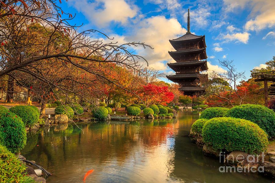 Cherry Photograph - Wooden Pagoda Of Toji Temple, Kyoto by Krunja
