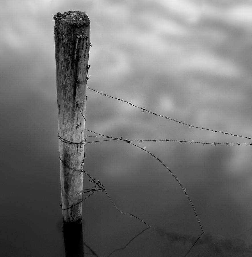 Wooden Post With Barbed Wire Photograph by Peter Levi