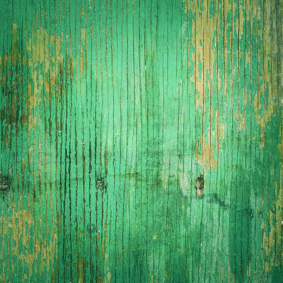 Wooden Texture Photograph by Thepalmer