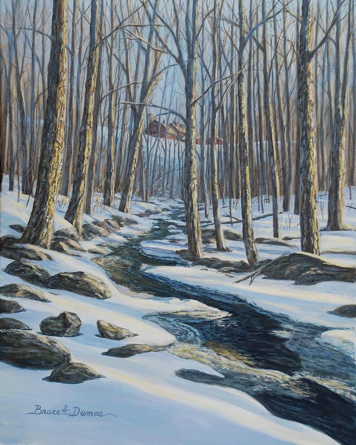 Woodland Farm Stream by Bruce Dumas