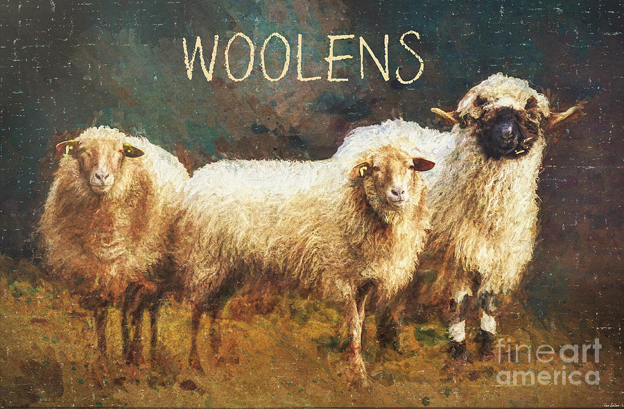Woolens Painting