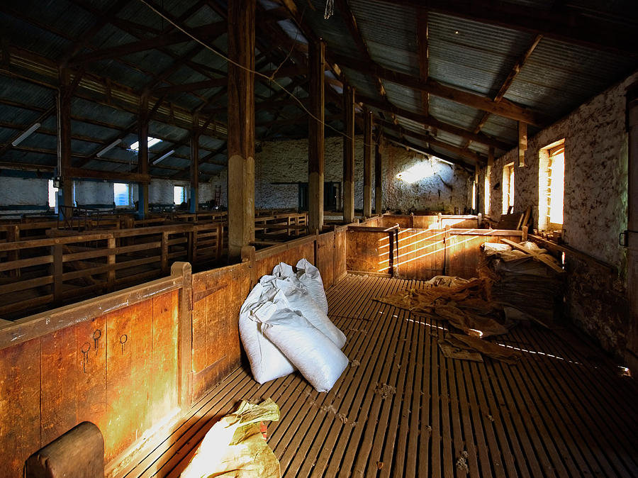 woolshed interior by Wayne Sherriff