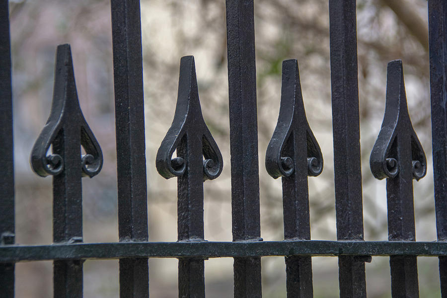Wrought Iron Pattern by Douglas Wielfaert