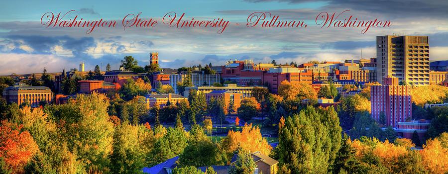 WSU Panorama by David Patterson