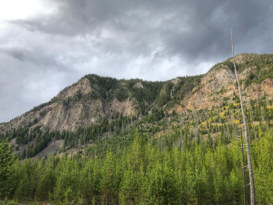 Wyoming Mountain by Bonnie Bruno