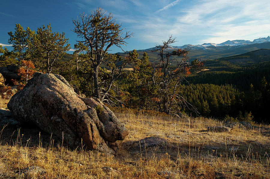 Wyomings Bighorn National Forest Photograph by Megan Ahrens