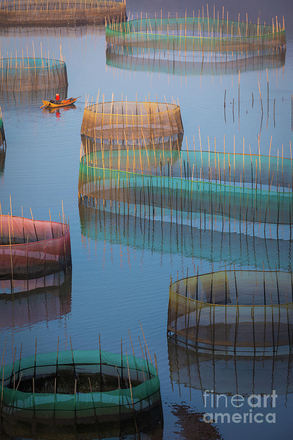 Asia Photograph - Xiapu Colored Nets by Inge Johnsson