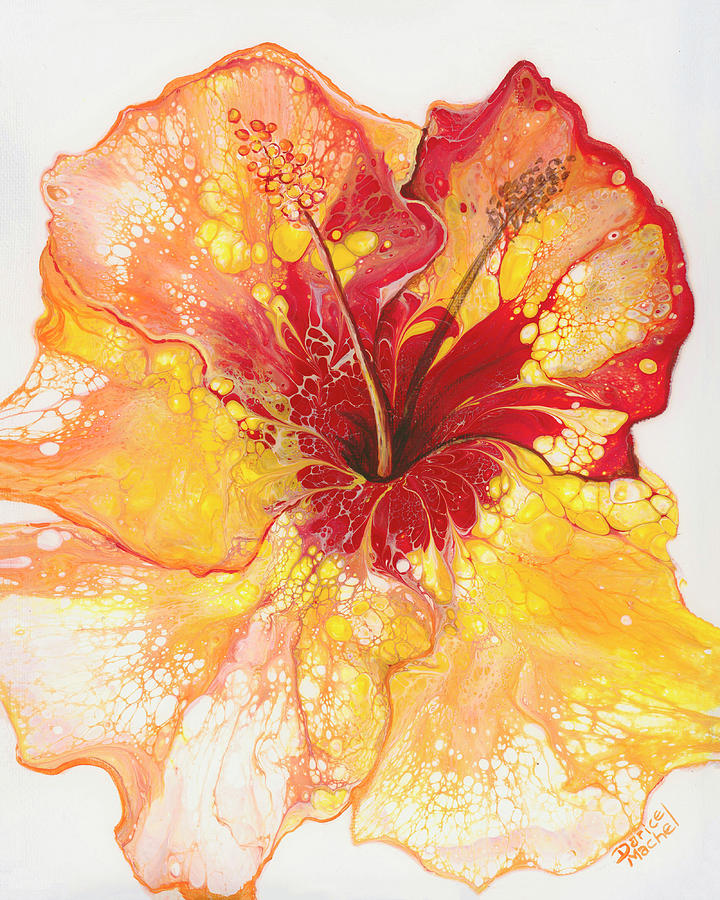 Yellow and Red Hibiscus by Darice Machel McGuire