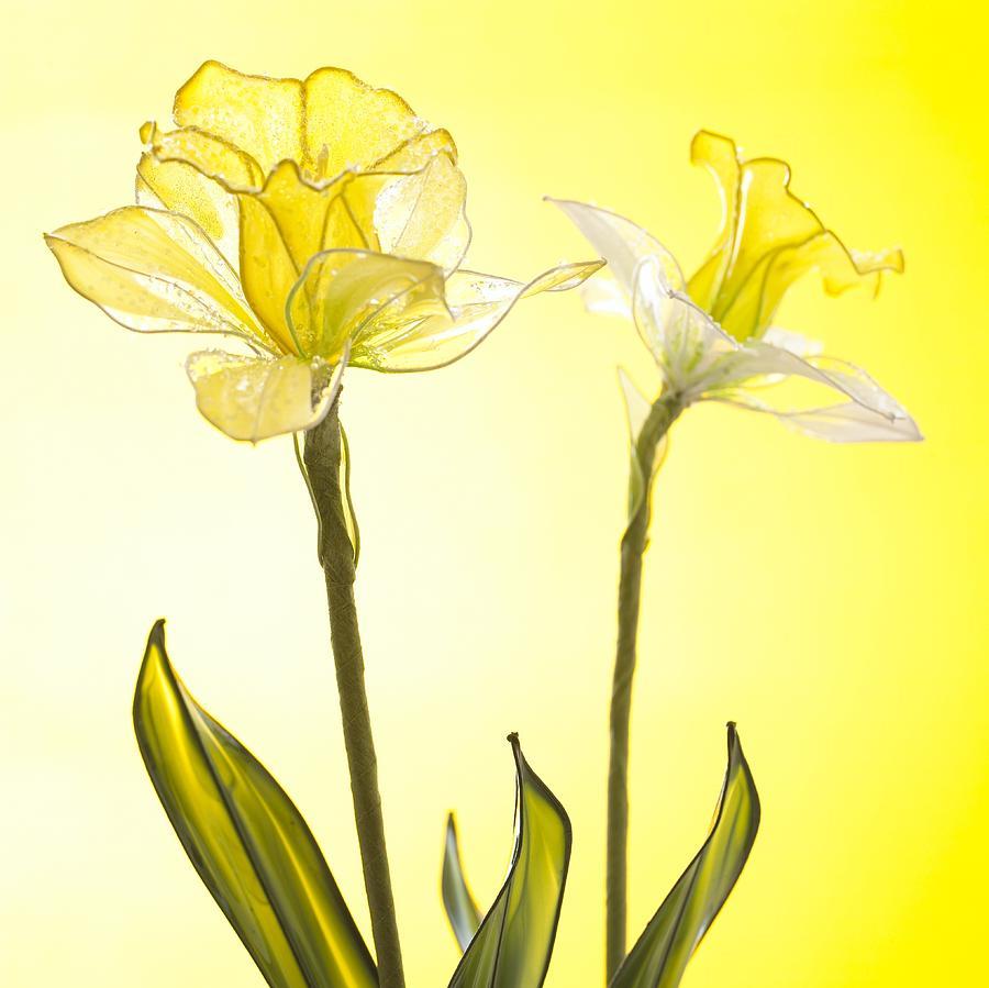 Yellow Botanical Summer Blossom by Joy of Life Arts