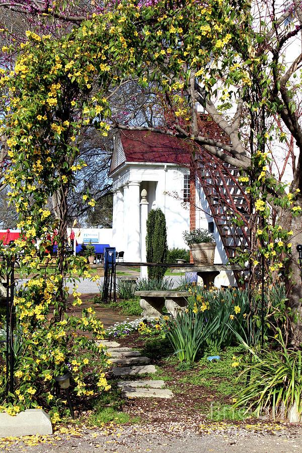 Yellow Flowers Garden Gate by Robert M Seel
