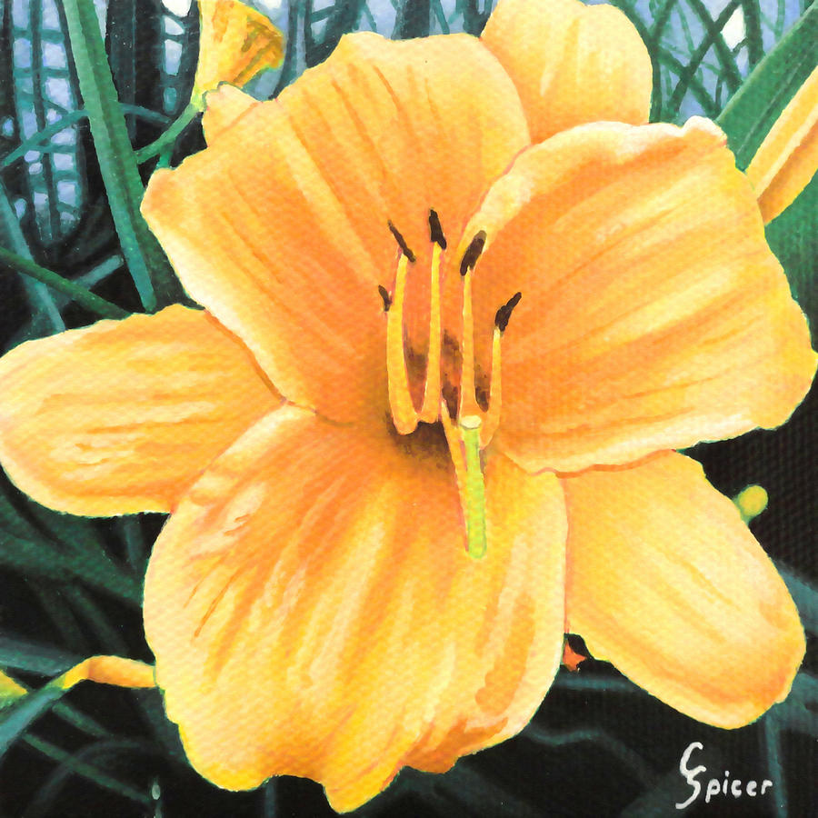 Yellow Painting - Yellow Hibiscus by Christopher Spicer