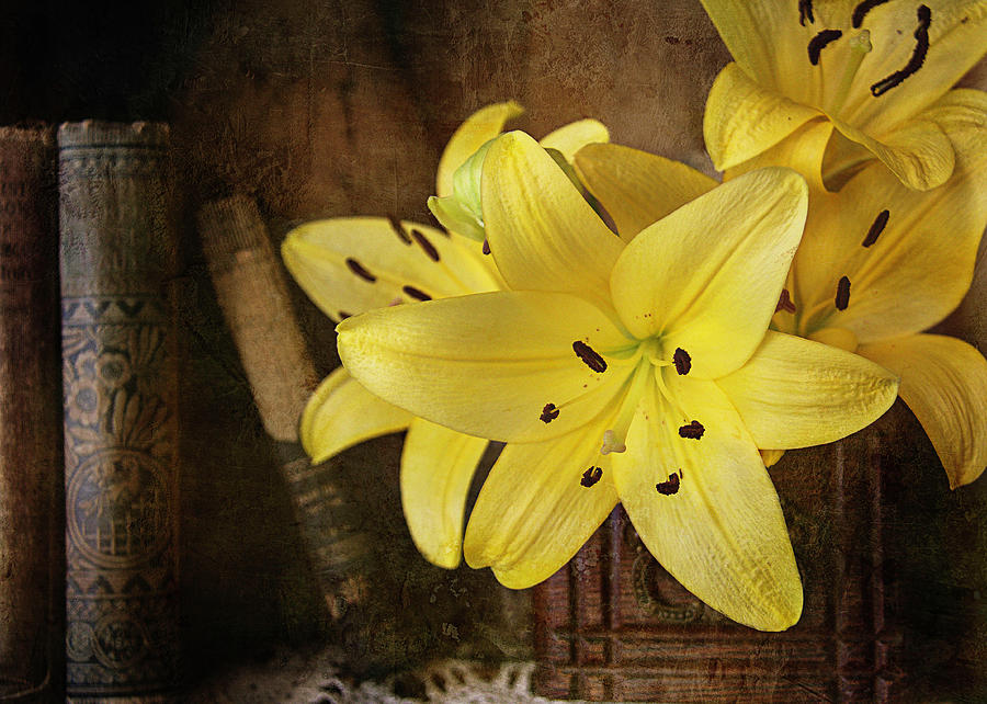 Yellow Lilies by Cindi Ressler