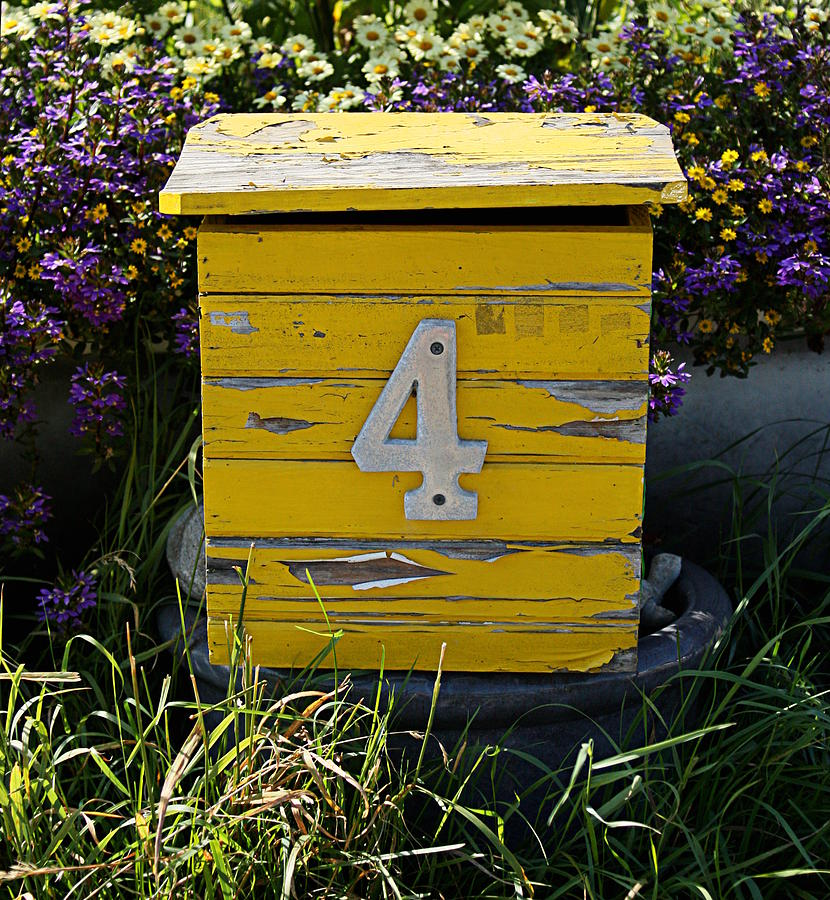 Yellow Mailbox by Sannel Larson