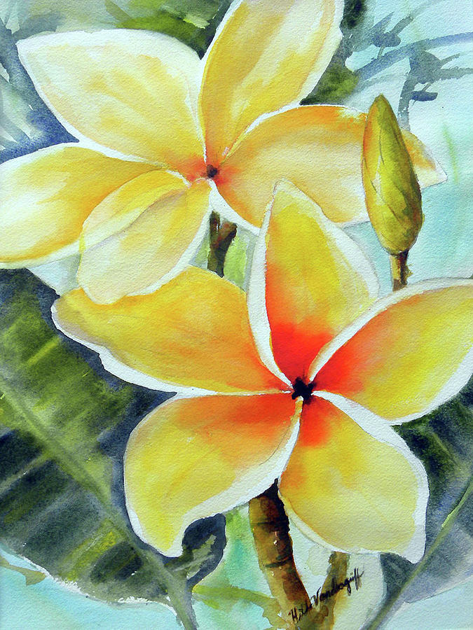 Yellow Plumeria by Hilda Vandergriff