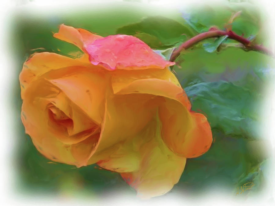 Yellow Rose - DWP 091502005 by Dean Wittle
