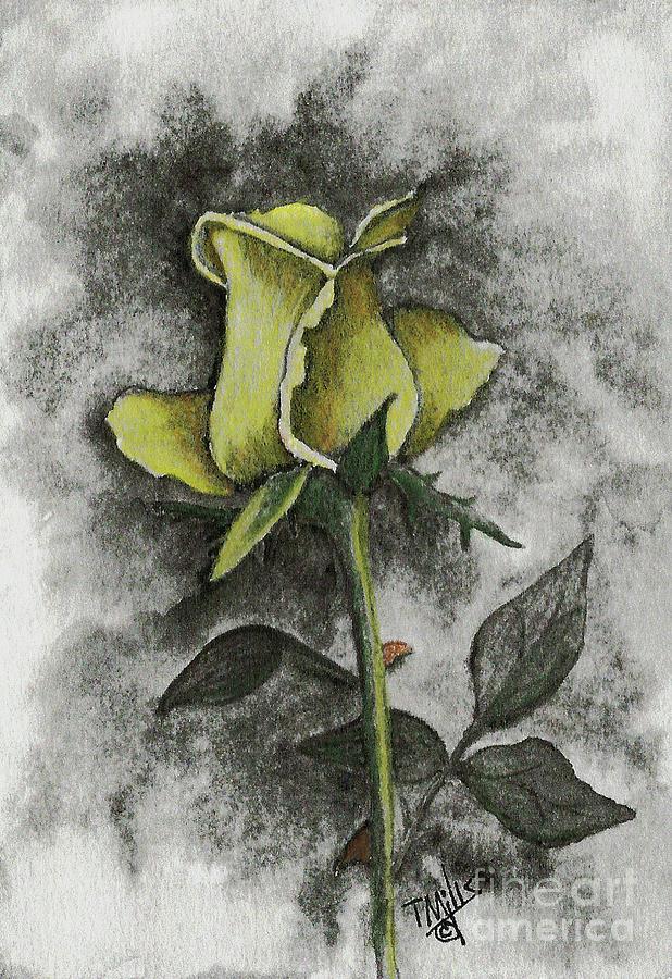Yellow Rosebud by Terri Mills