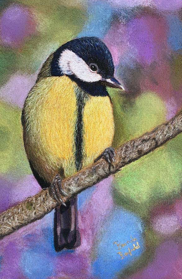 Yellow Tit by Brenda Bonfield