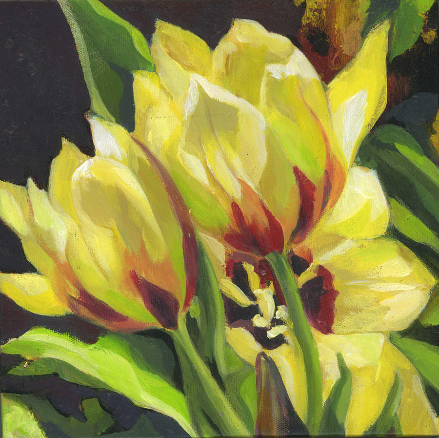 yellow tulips by Alfred Ng