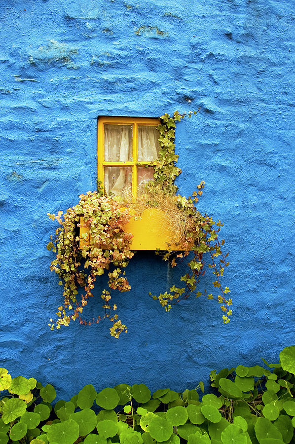 Yellow Window On Bright Blue Wall & Photograph by Sarah Franklin Www.eyeshoot.co.uk