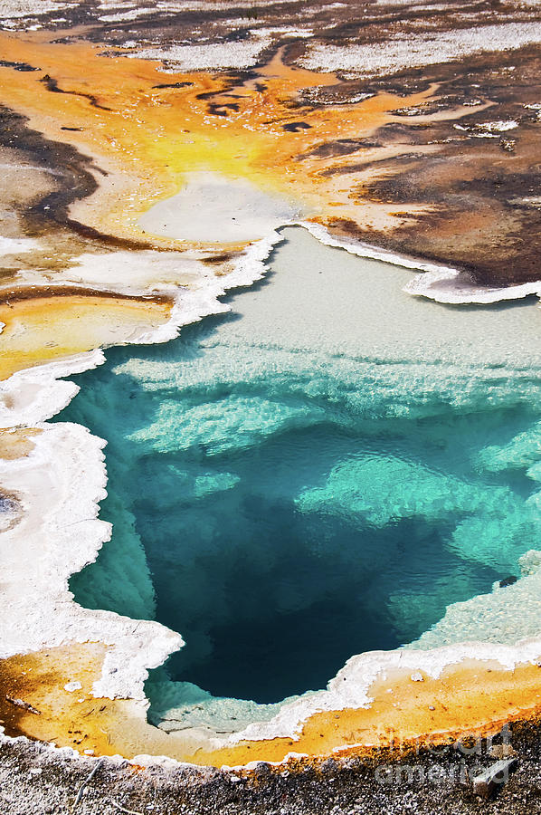 Yellowstone Photograph - Yellowstone hot spring vertical by Delphimages Photo Creations