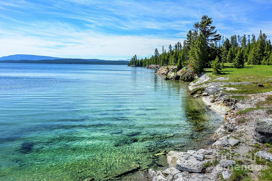Yellowstone Lake by David Meznarich