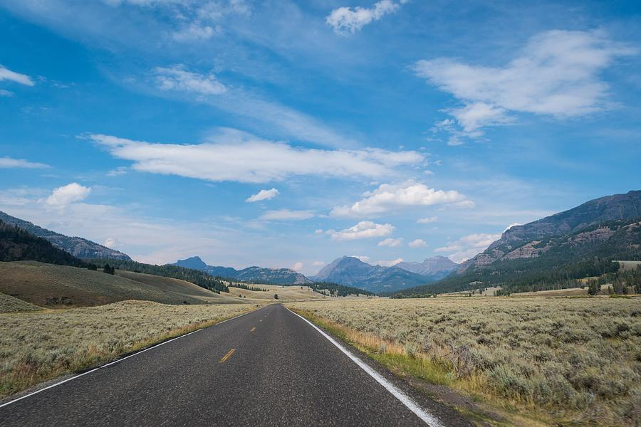 Yellowstone National Park Road by Michelle McConnell