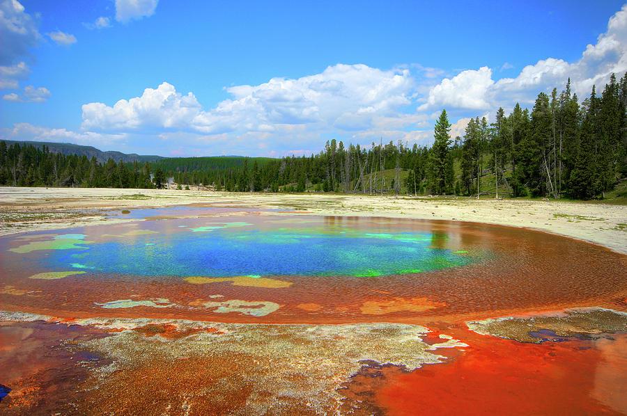 Yellowstone National Park by Robert Blandy Jr