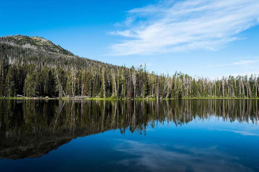 Yellowstone Reflective Lake by Michelle McConnell