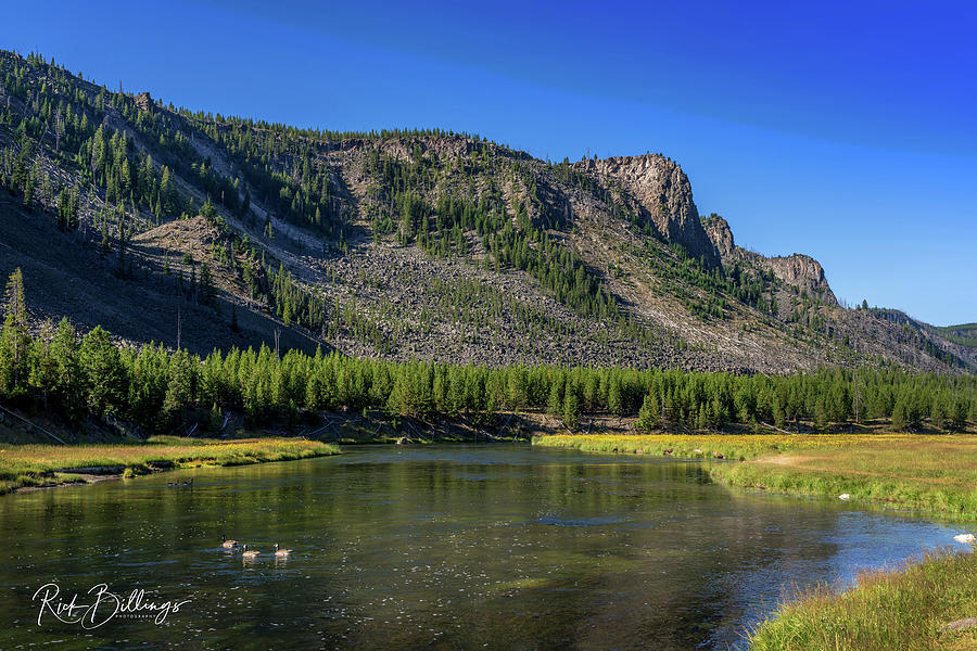 Yellowstone River No 1083 by Rick Billings
