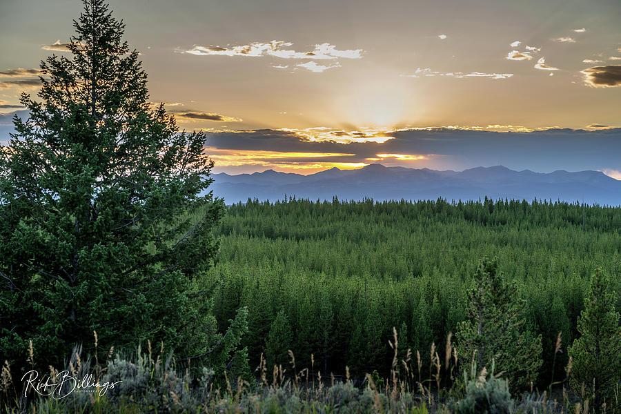 Yellowstone Sunset 3 by Rick Billings
