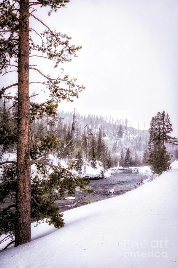 Yellowstone Winter Scenery 5