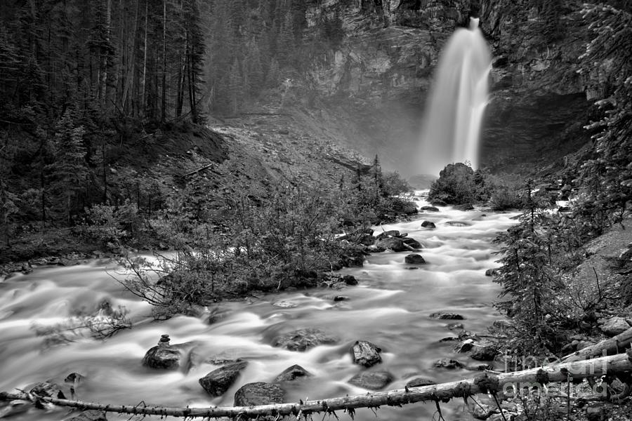 Yoho Laughing Falls In The Woods Black And White by Adam Jewell