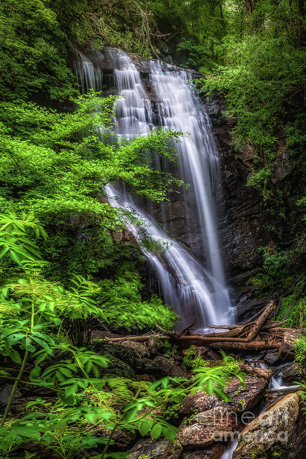 York Creek Falls - Georgia by Nick Zelinsky