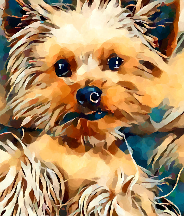 Animal Painting - Yorkie by Chris Butler