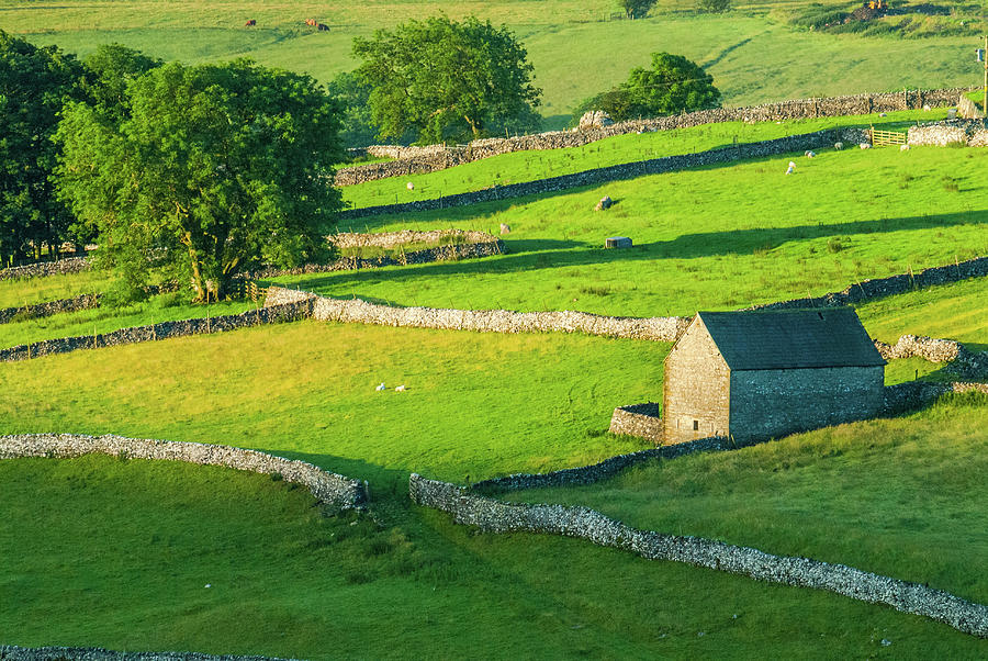 Britain Photograph - Yorkshire Dales Near Malham by David Ross