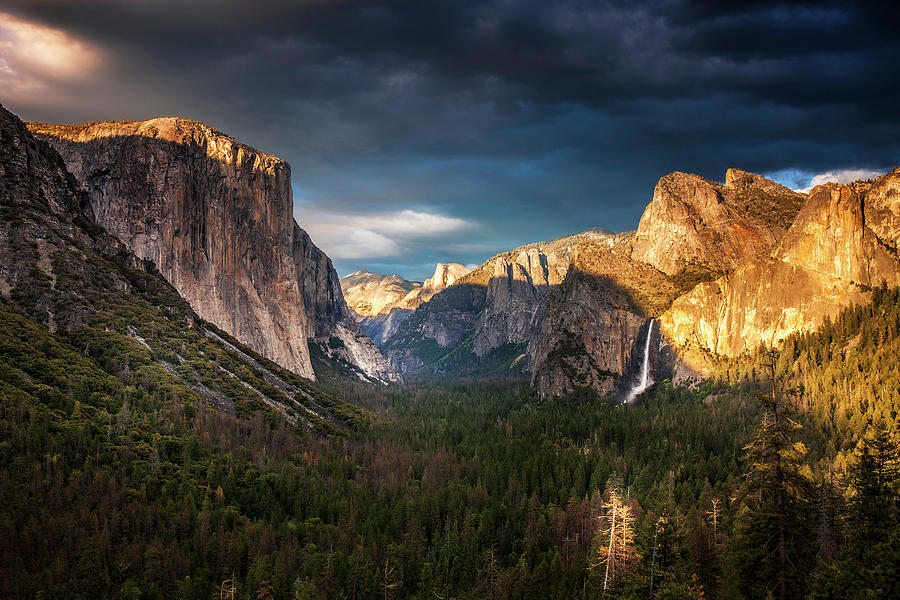 Yosemite Evening Light Photograph