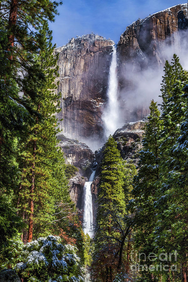 Yosemite Falls by Anthony Michael Bonafede