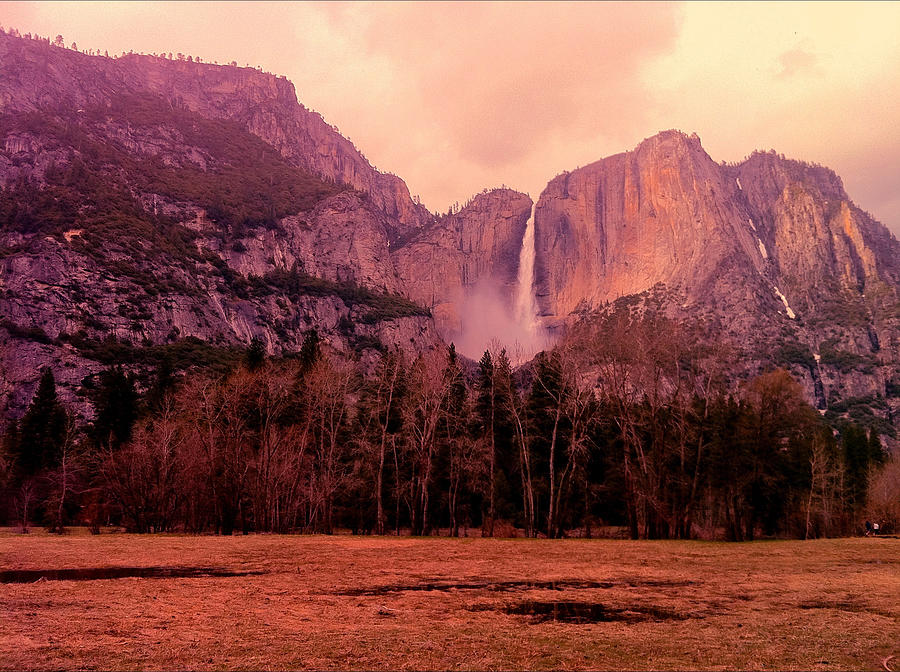 Yosemite Falls View Photograph by Denise Taylor